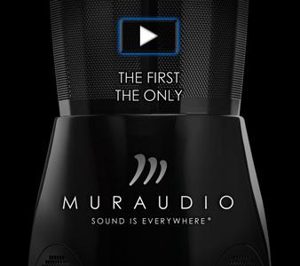 338x300 Muraudio