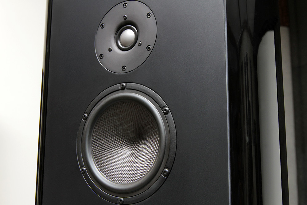 Magico tweeter and midrange
