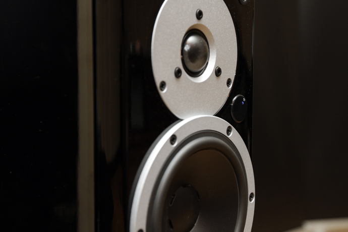Dynaudio Xeo woofer and tweeter