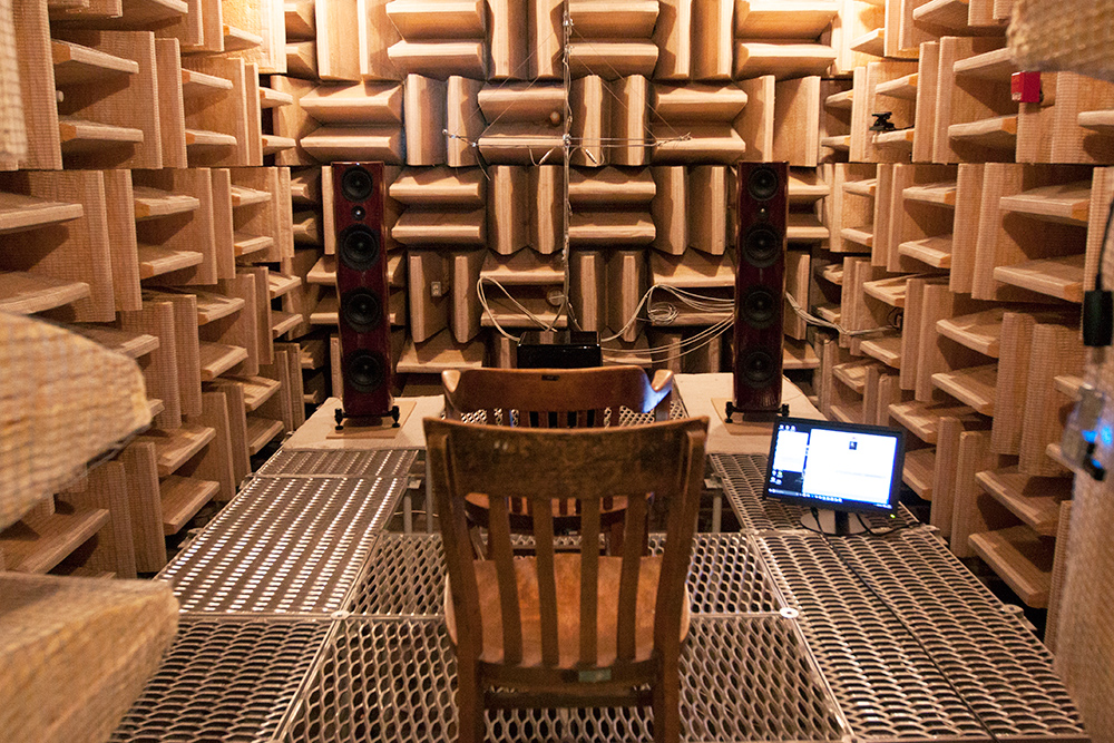 Anechoic system